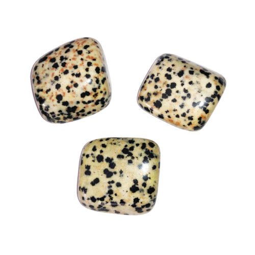 pierre roulee jaspe dalmatien