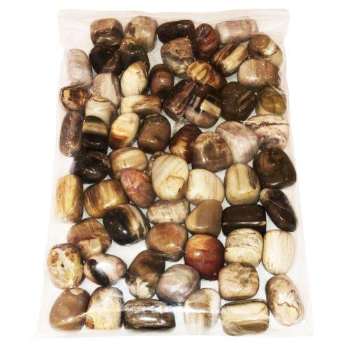 sachet pierres roulées bois fossilisés 1kg