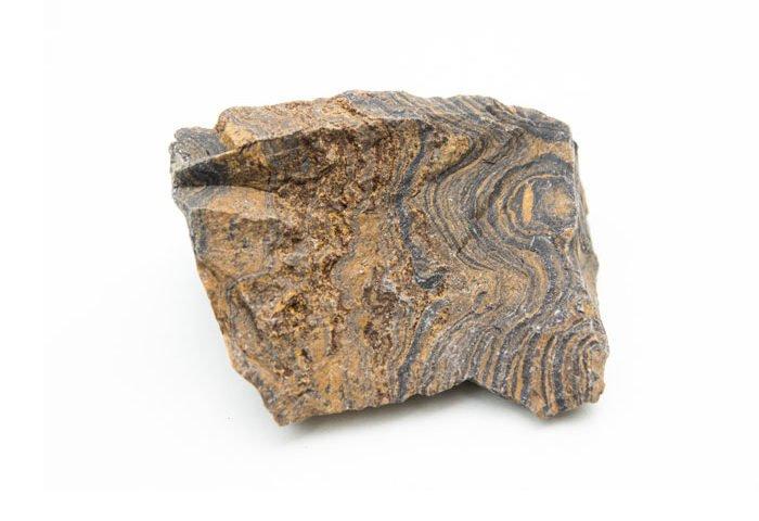 pierre stromatolite