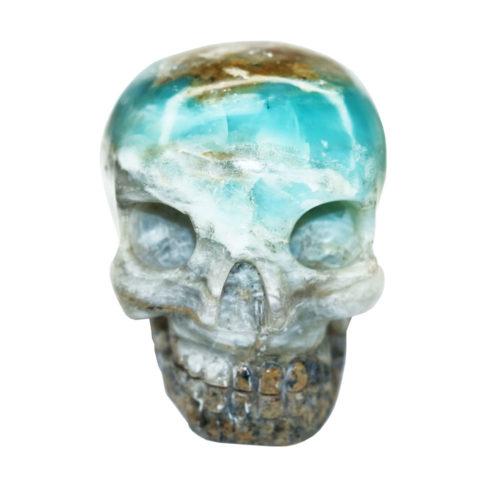 crane opale bleue des andes taille L